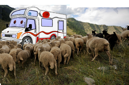 Campervan with sheep in mountains sammy's tales waylaid in wales